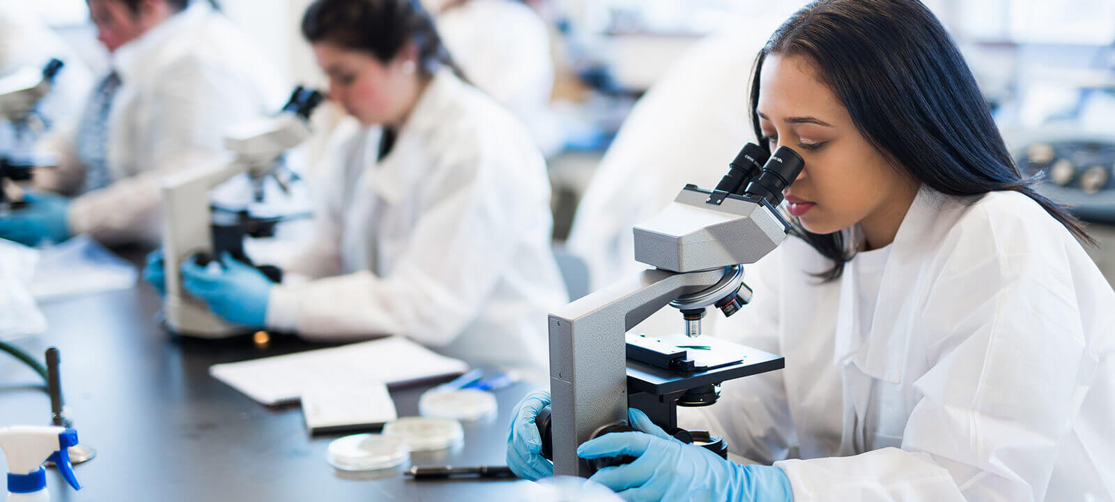 Microbiology student Using microscope.